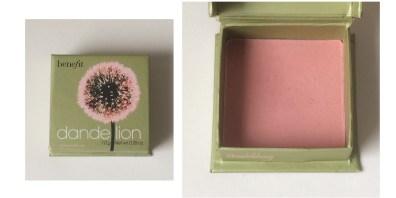 Dandelion collage