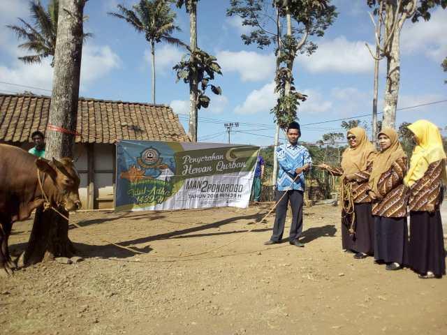 Penyerahan Hewan Qurban di Desa Gajah
