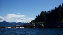 Fjord tour in Alaska
