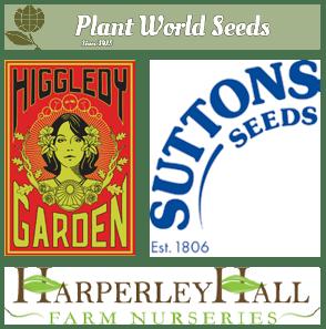 seeds offer montage