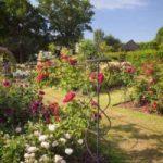 RHS gardens September events