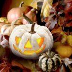 Best pumpkins for Halloween
