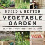 WIN Build a Better Vegetable Garden book