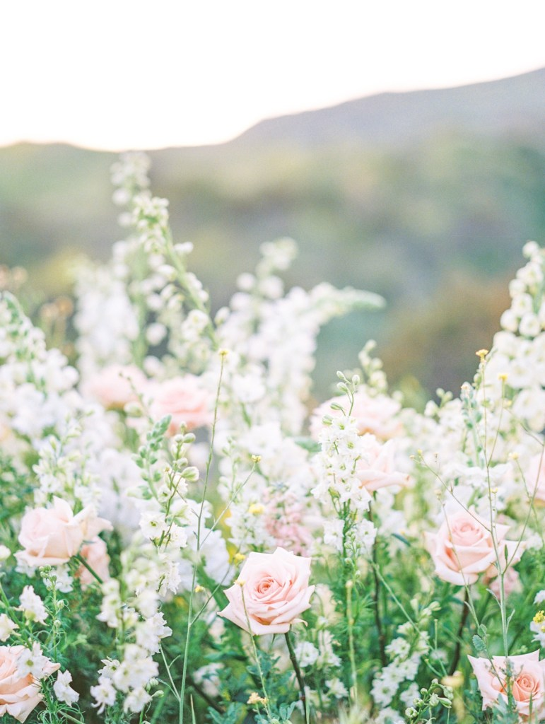 San Diego Elopement Wedding With Blush And White Flowers