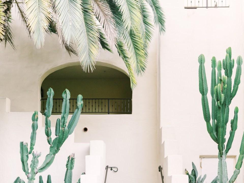 Beautiful Estancia La Jolla Wedding Architecture