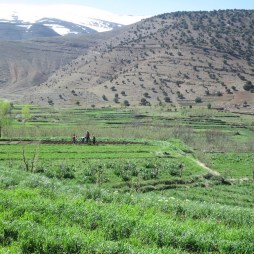 Ait Bougemez Valley, Morocco © Mandy Sinclair
