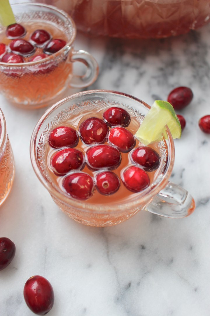 Fizzy Cranberry Punch