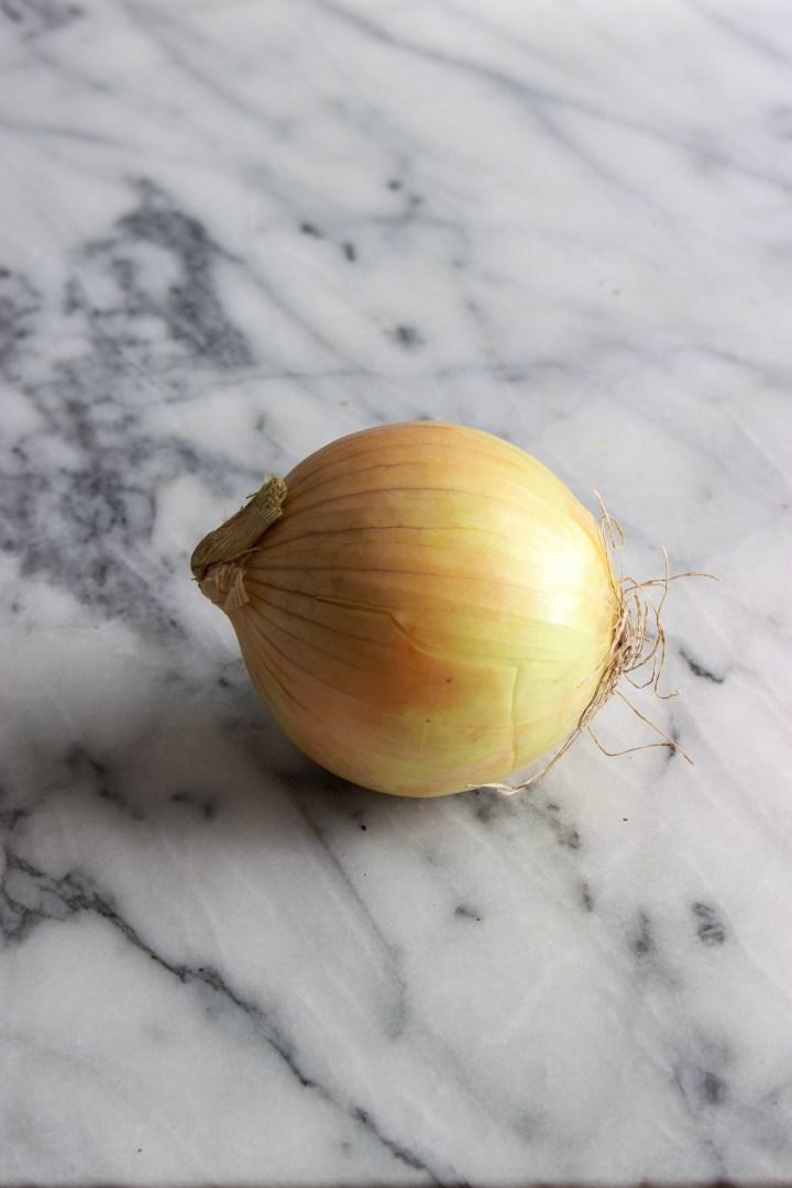 onion anatomy 101