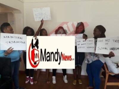 girls demonstrating - Zimbabwe United Nations Vice President Arrested Over Sexual Harassment (Photos)