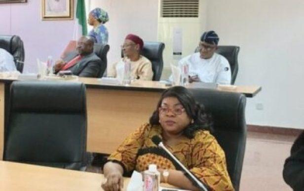 8738604_com2_jpeg0c26e013537746223bfb735dde68fdf31713081946 Commonwealth Election Observers Land In Nigeria, Meet INEC (Photos)