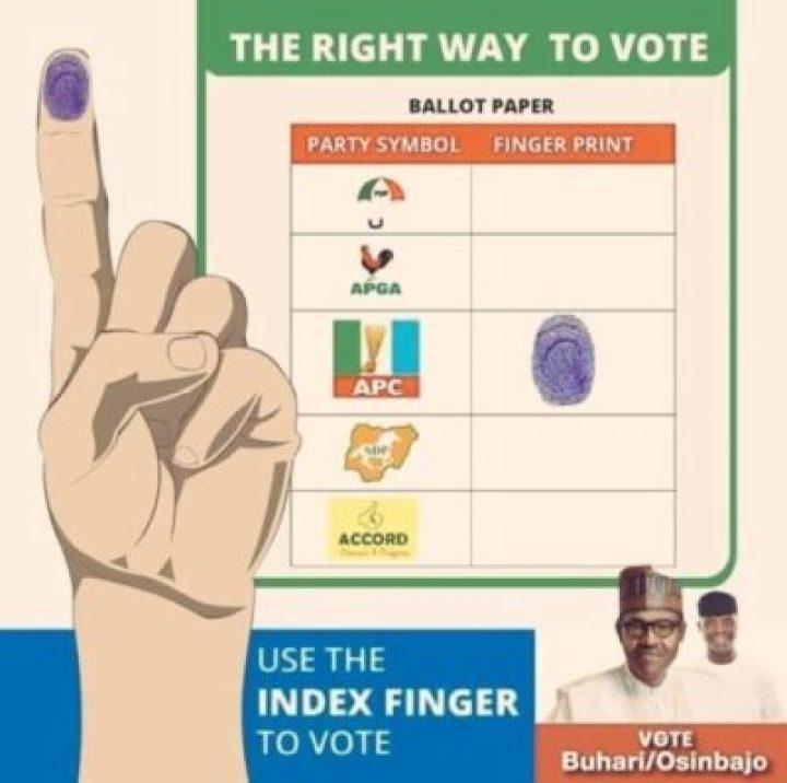 8741737_dycbfax0agmcqj_jpeg_jpeg4ec8268d059bfde1f8dbb89e42a9880b233877431 How To Vote On Saturday (Pics)