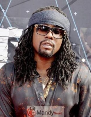 """images 19 - Favorite Sleep Food: """"Eba And Stew Or Cowtail And Rice"""" Rapper Wale Says"""