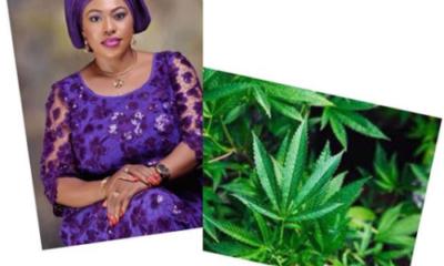 Bill To Legalise Marijuana In Nigeria, Passes 2nd Reading