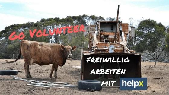 Go Volunteer - freiwillig arbeiten mit HelpX