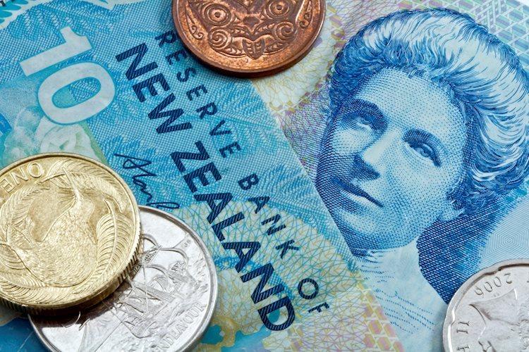 NZD / USD subirá a 0,74 para fin de año – Westpac