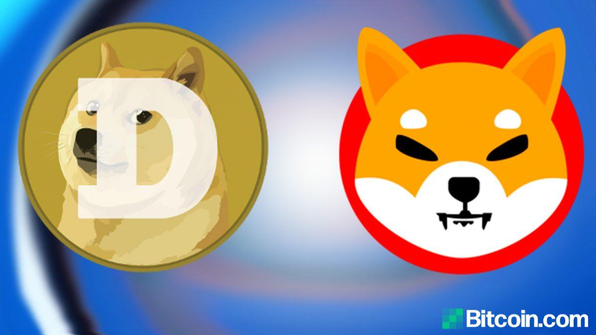 SHIB vs DOGE – ¿Quién es el mejor perro en Crypto Land?  – Noticias de Bitcoin de Altcoins