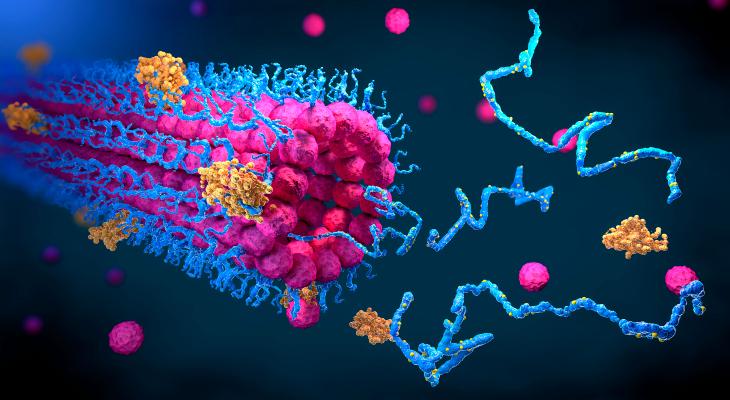 Las acciones de la plataforma de descubrimiento de proteínas Absci hacen su debut en el mercado – TechCrunch