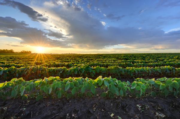 FinTech transforma la clase de activos más antigua del mundo: tierras agrícolas – TechCrunch
