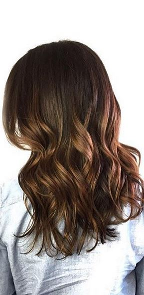dark brunette hair color with a hint of highlights