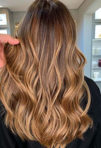 apricot honey highlights