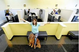 Dog laundromat from new haven register