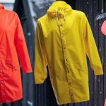 Summer Rain   Rains' Style and Function