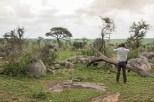 Allen Serengeti Waking Safari-2017-1-2