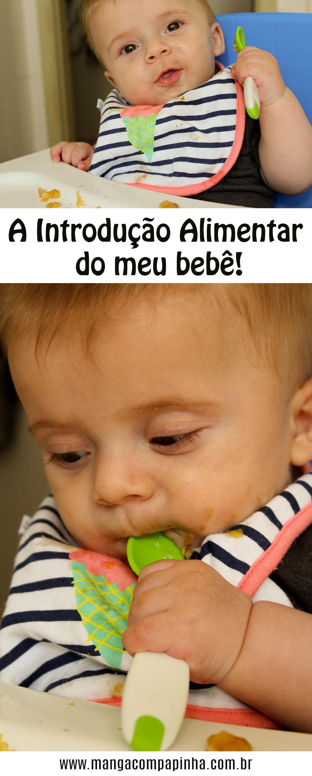 A Introdução Alimentar do meu bebê!