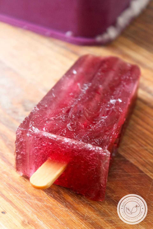 Sorvete de Fruta Caseiro