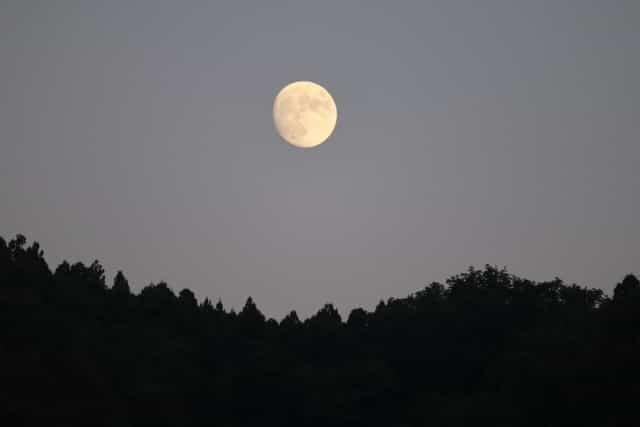漫画友達・竈門炭治郎は鬼殺隊が存続していたら柱になっていた?|鬼滅の刃考察イメージ夜空に浮かぶ月