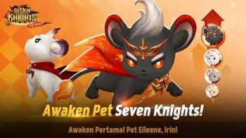 Netmarble Hadirkan Update Awaken Pet di Seven Knights
