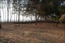 vasco-mangalore-holiday-village7