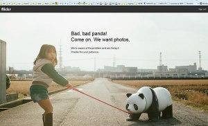 Flickr sẽ đóng cửa?