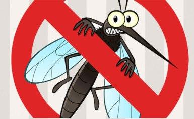 Cách diệt muỗi phòng chống virus Zika