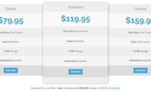 Chỉ cần trả 450K cho một gói hosting lưu trữ web trọn đời