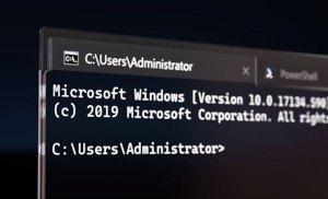 Windows Terminal đã sẵn có trên Microsoft Store