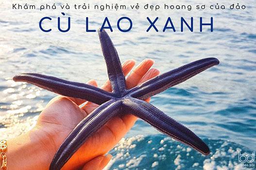 Khám phá và trải nghiệm vẻ đẹp hoang sơ của đảo Cù Lao Xanh – Quy Nhơn