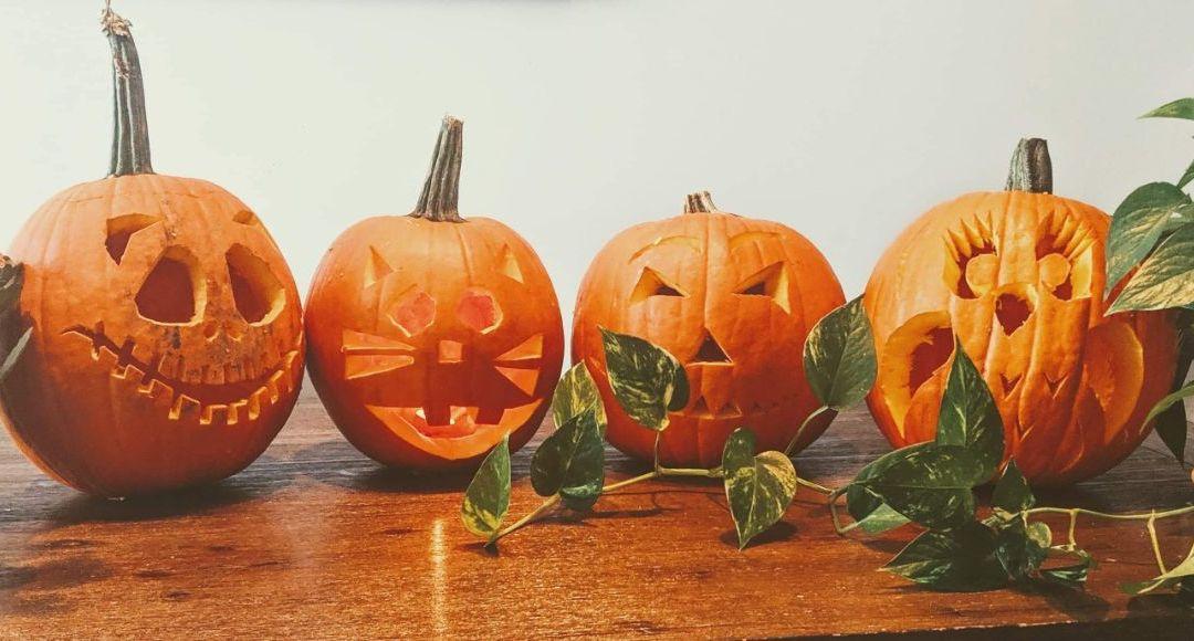 Laissez vos enfants manger leurs bonbons d'Halloween