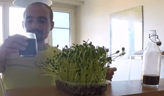 délicieux jus de légumes