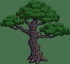 val15_tree