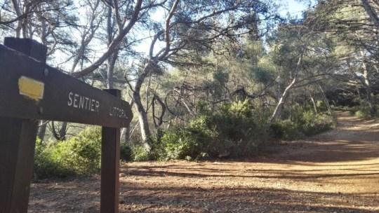 Topo trail : Saint Cyr sur Mer Sentier des Vignes et du Littoral