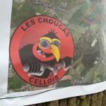 Choucas Cellois