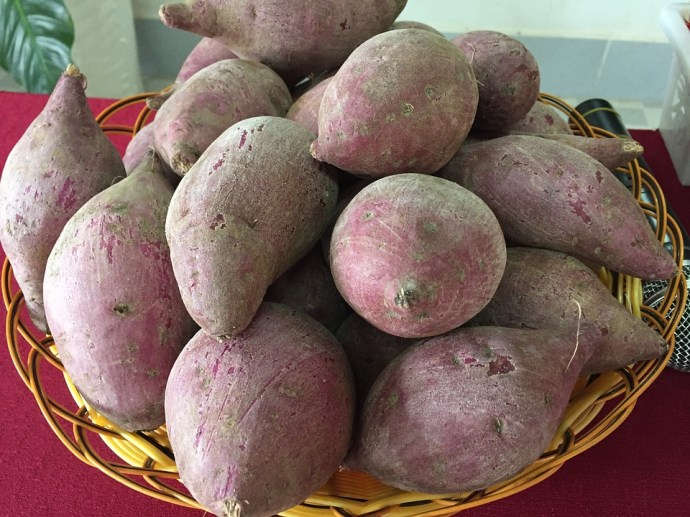 potato-2394773_960_720