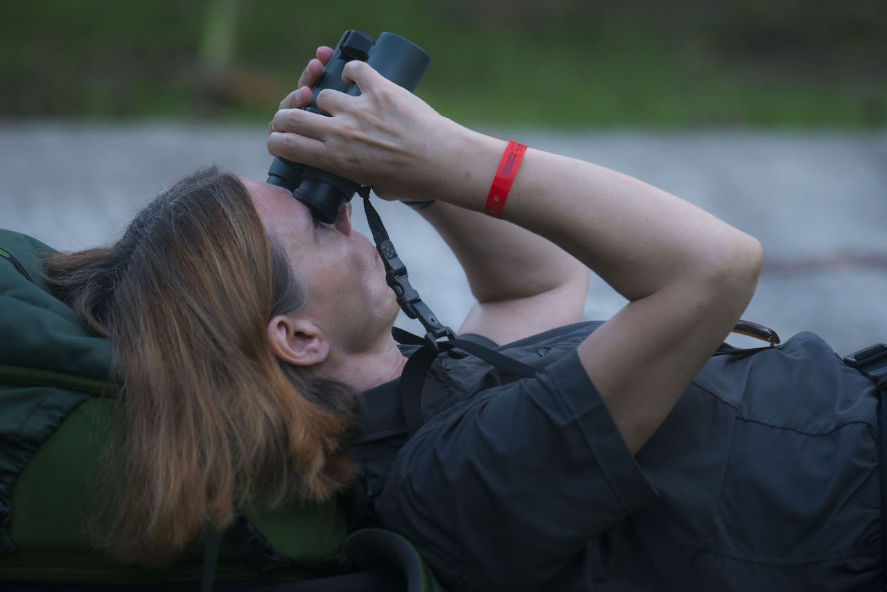 What kind of person like to practice birdwatching?