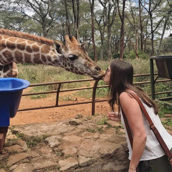 For a cheaper alternative to Giraffe Manor, check out the Giraffe Center where you can get up close and personal with a giraffe.
