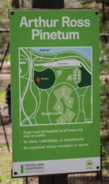 Pinetum Sign copy