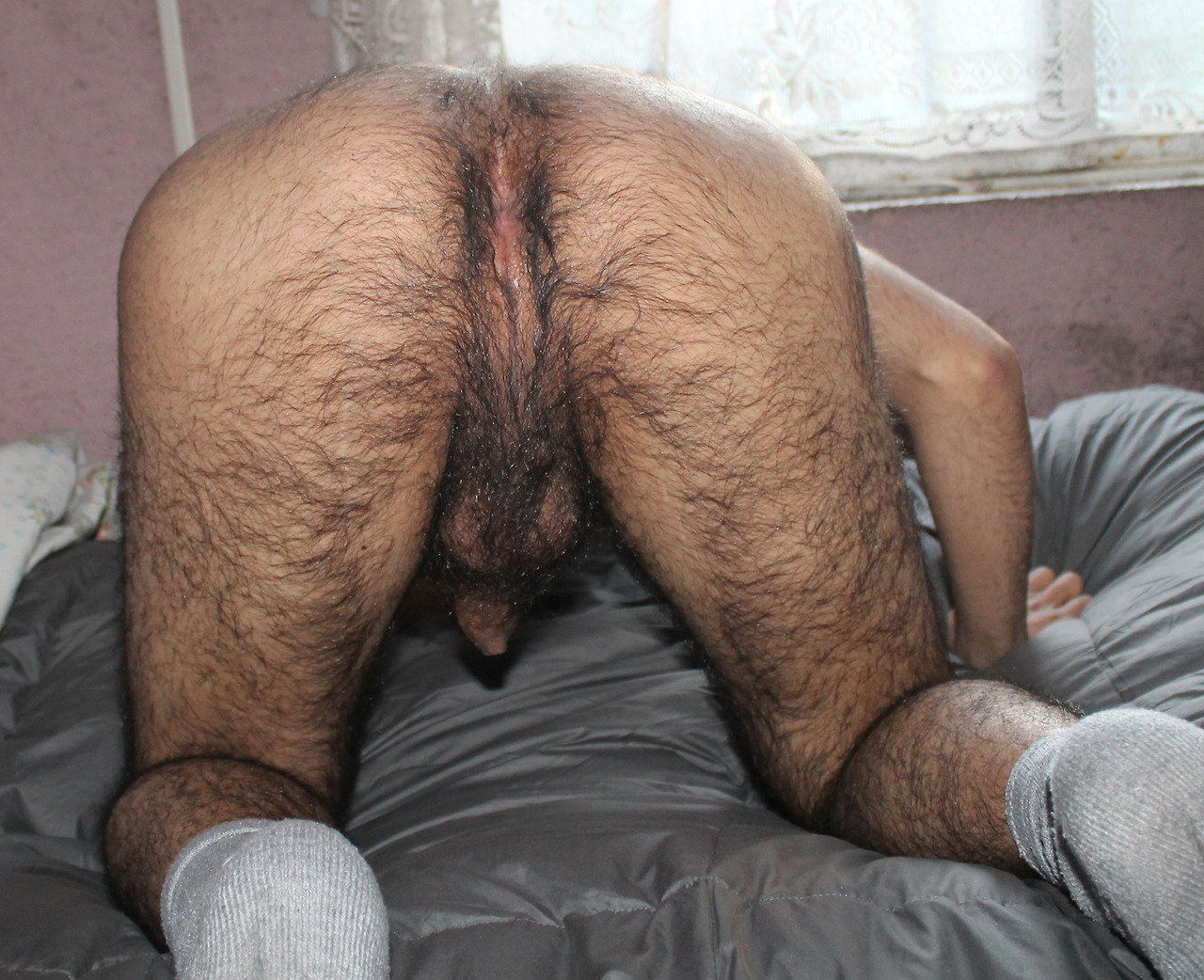 Men With Hairy Butts 50