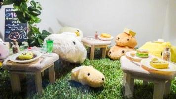 kapibarasan-cafe-10th-anniv-sign-gaienmae[5]