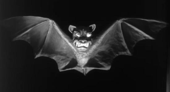 The Bat - Unusual Decoration
