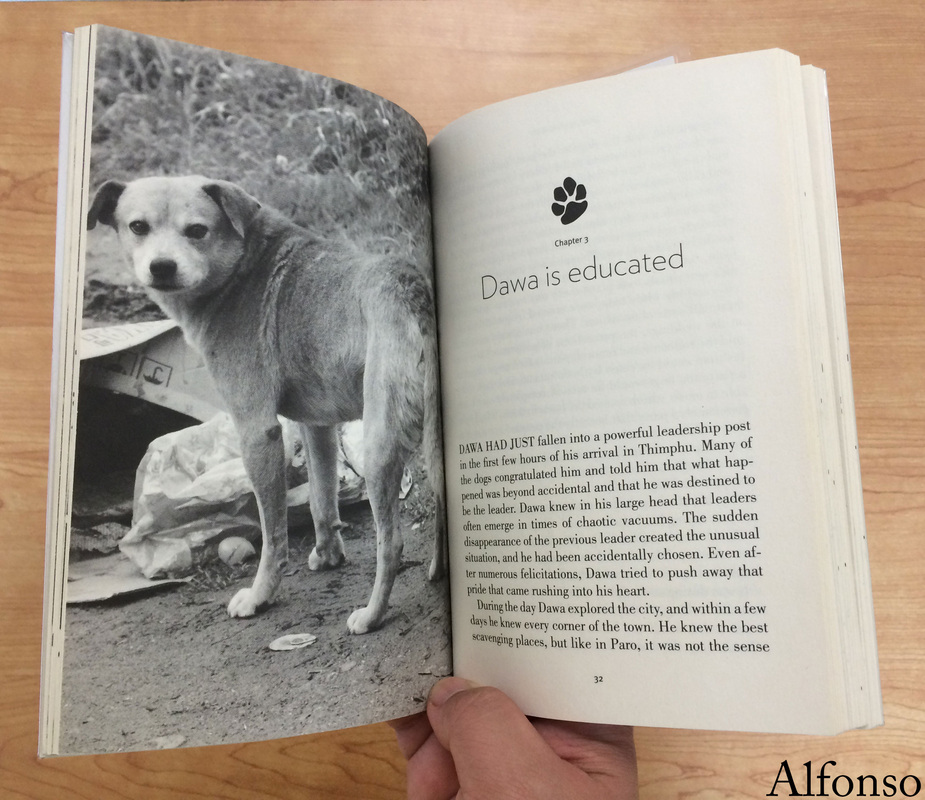 summary of dawa the stray dog in bhutan chapter 3